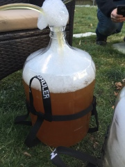 First wort transfer