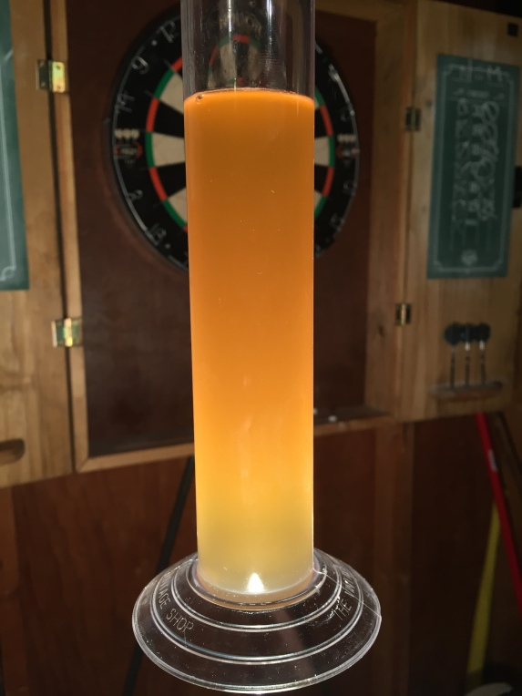 Our Galaxy & Mosaic IPA has perfect color and flavor!
