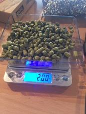 Measuring out Citra Hops